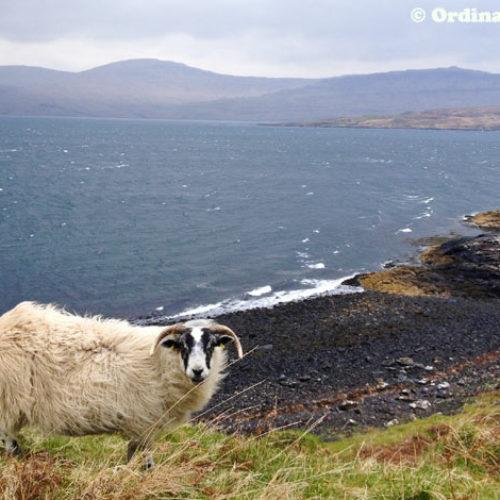 Scotland for Island Hopping