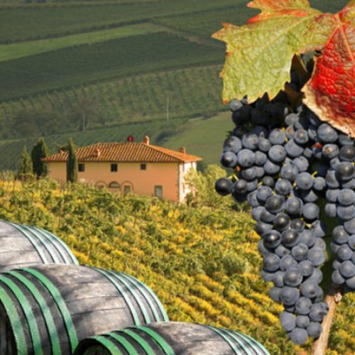 small group tuscany wine tasting tour from florence in florence 107696